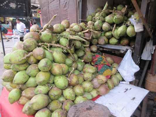 Takové kokosové ořechy by na Srí Lance nikdo nekoupil.