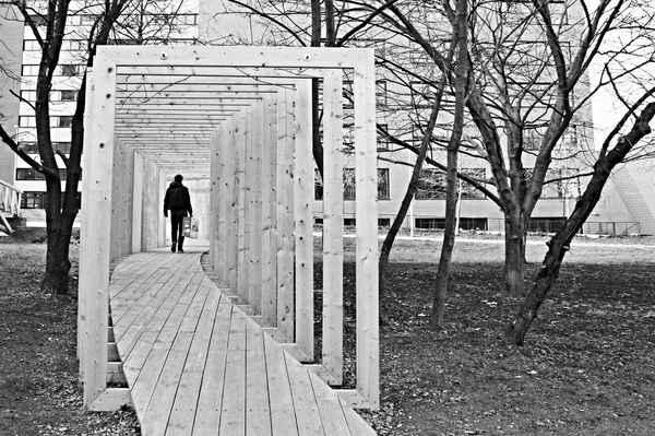 Nasávání adeptů studia architektury