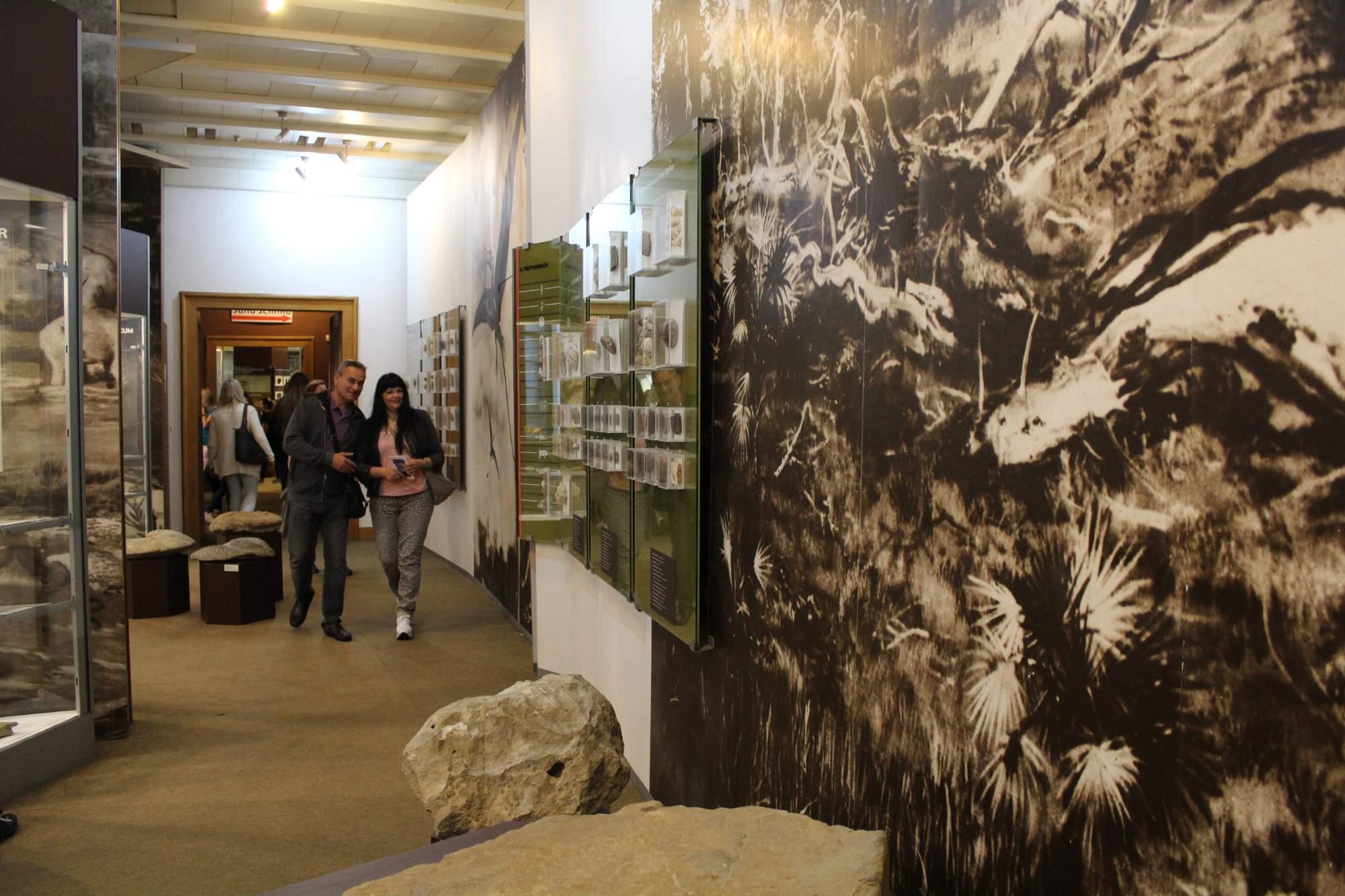 Výstava Zaniklý život na Moravě